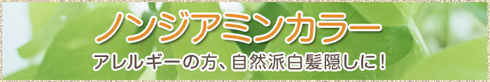 ノンジアミンカラー  横浜市 東白楽 美容室